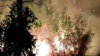 Kebakaran Hutan , Api Terus Merembet di Dekat Permukiman Warga