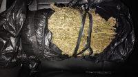 Simpan 2 Kg Ganja di Cincin Sumur,  Ditangkap Polisi