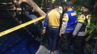 Balita 4 Tahun Meninggal Dunia Tenggelam di Kolam Renang Hotel Bukit Daun