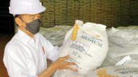 Presiden Joko Widodo memastikan stok beras nasional mencukupi