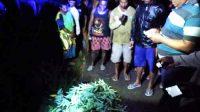 Pemuda Tewas ( Diduga) Dibunuh dan Mayatnya di Buang di Alas Dowo