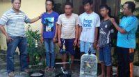 Empat Sindikat Pencuri Burung Dibekuk Unit Reskrim Polsek Kota Tuban