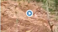 Video Longsor Susulan Mengubur 5 Orang 2 rumah 1 excavator 2 mobil, Relawan Ini Menjerit jerit